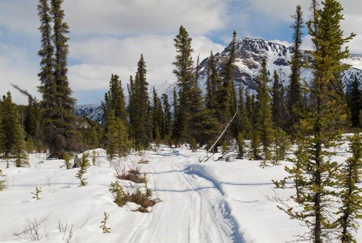 0_new Alaska Snowmobile
