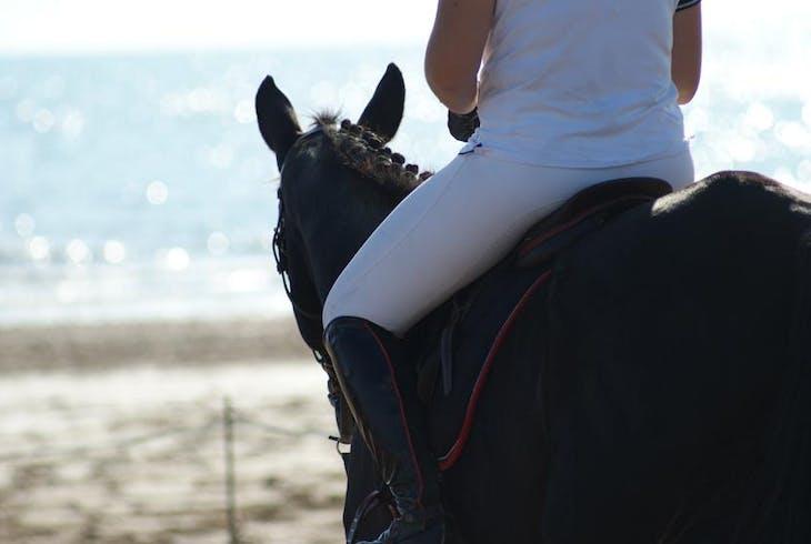 0_new Beach Horseback