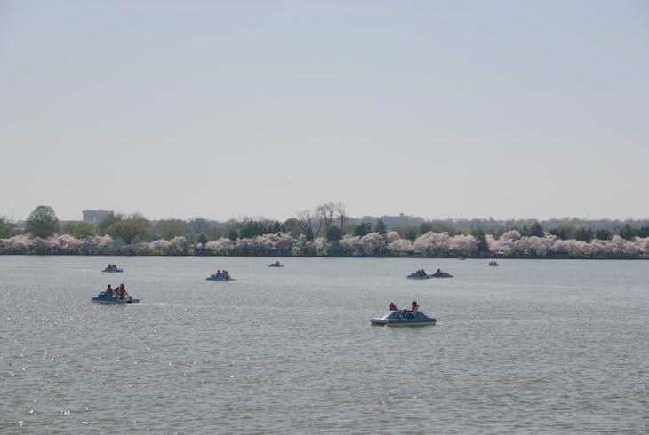 0_new Boat Basin Dc