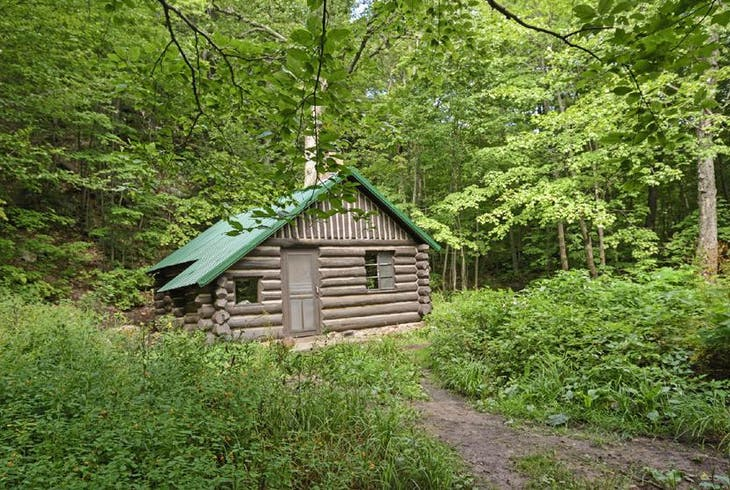 0_new Forest Cabin