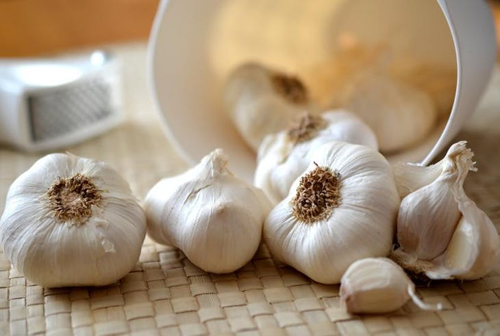 0_new Garlic