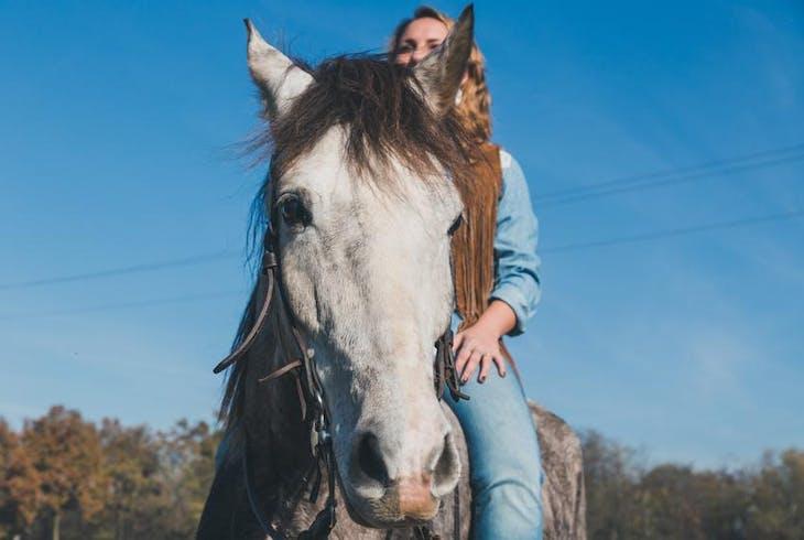 0_new Horseback Riding