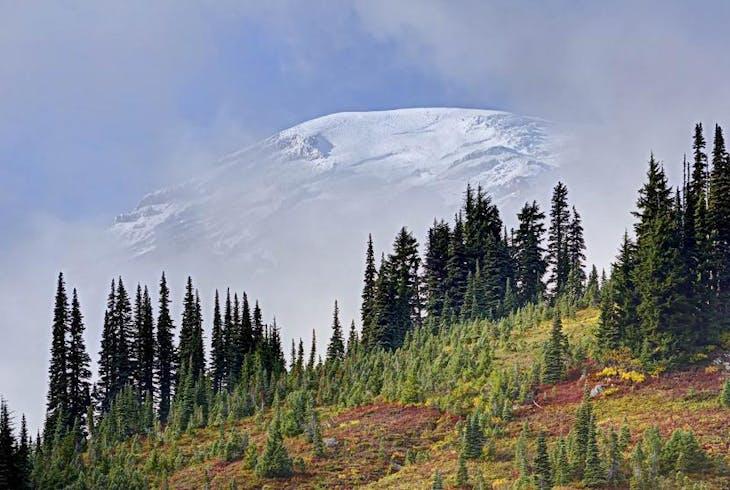 0_new Mt Rainier