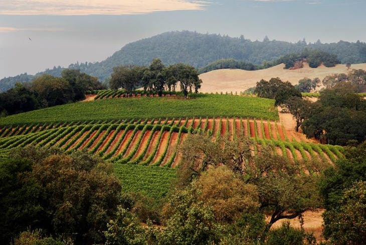 0_new Napa Valley