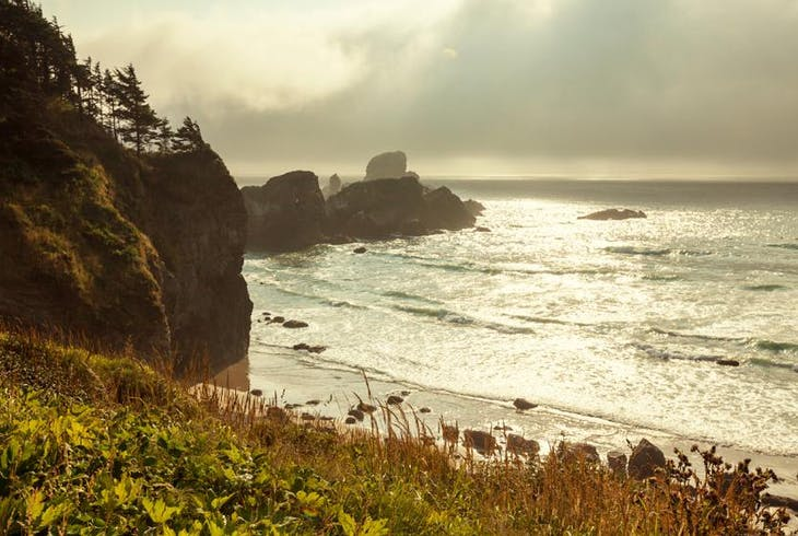 0_new Olympic National Park