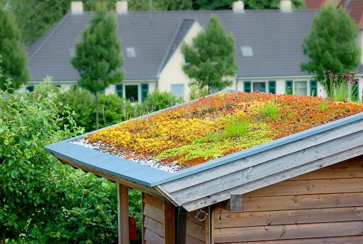 0_new Rooftop Garden