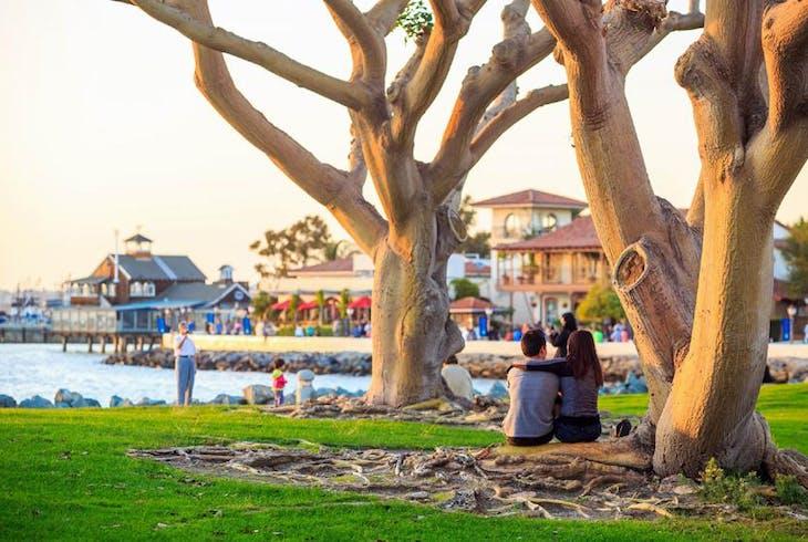 0_new San Diego