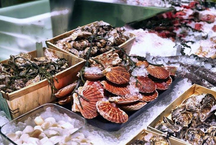 0_new San Diego Food Tour