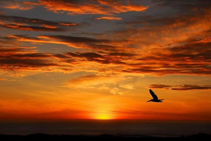 0_new San Diego Skyline Sunset