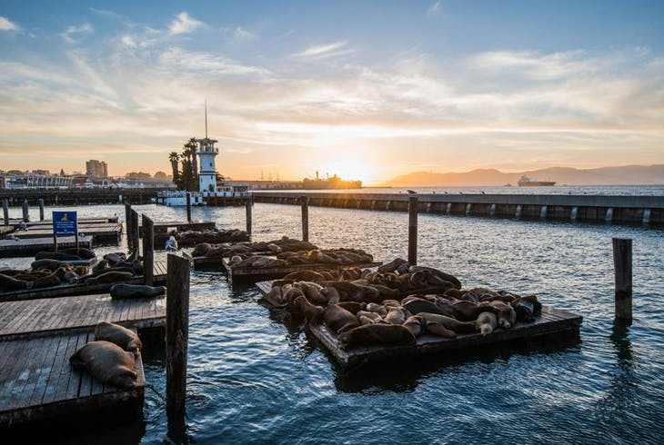 0_new San Francisco Bay Sunset