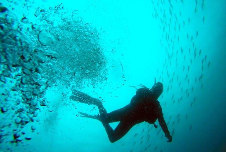 0_new Scuba Diving
