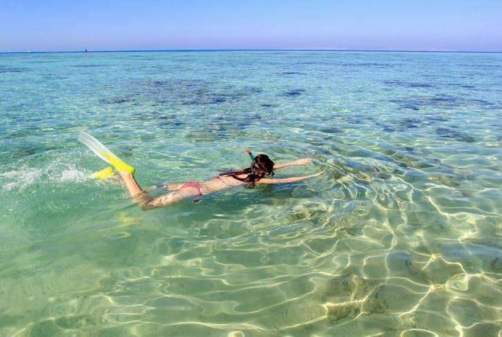 0_new Snorkeling