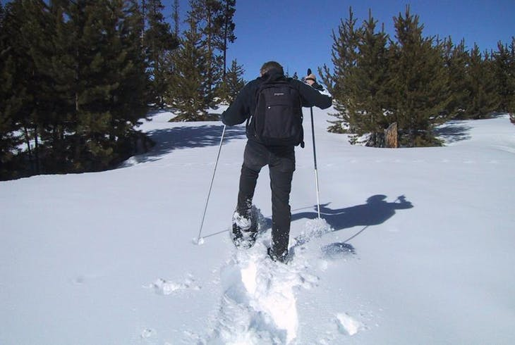 0_new Snowshoe