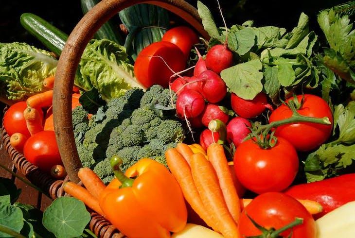 0_new Vegetables