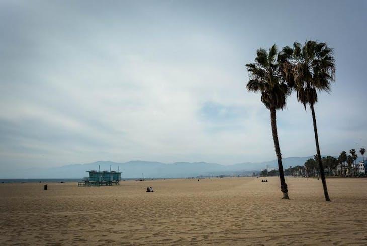 0_new Venice Beach