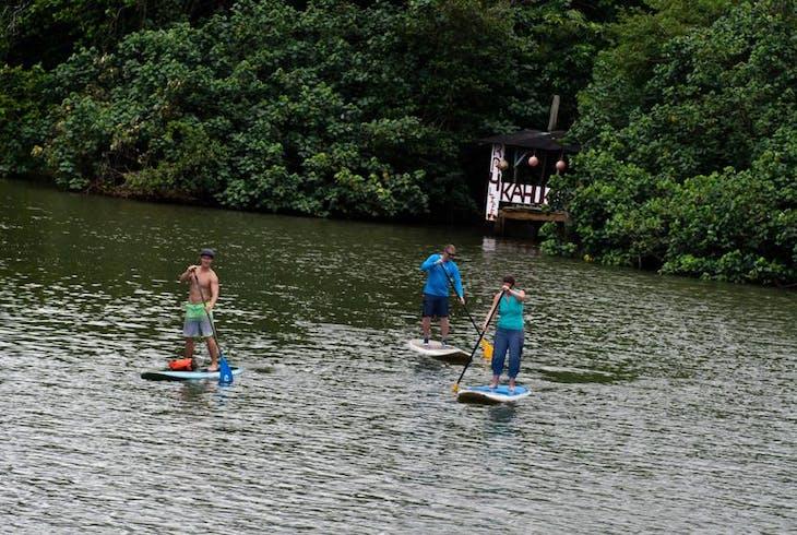 Active Oahu Tours Rainforest River Paddleboarding Tour