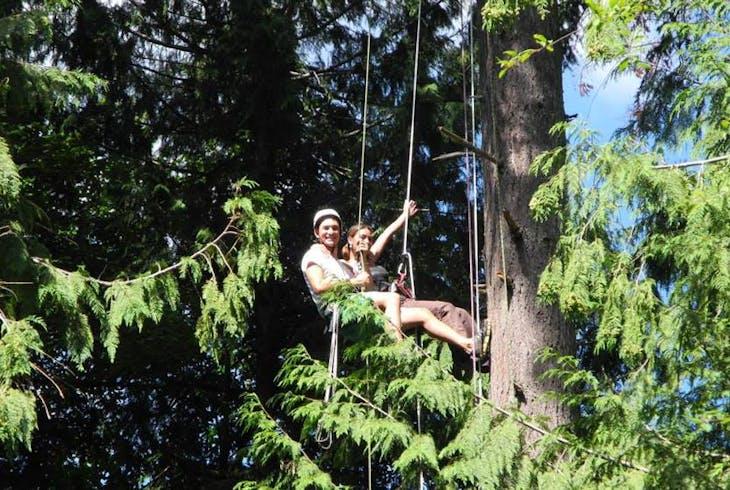 AdventureTerra Tree Climbing