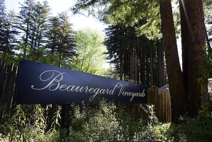 Beauregard Vineyards