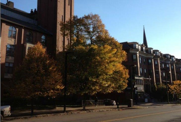 Boston Pedicab South End