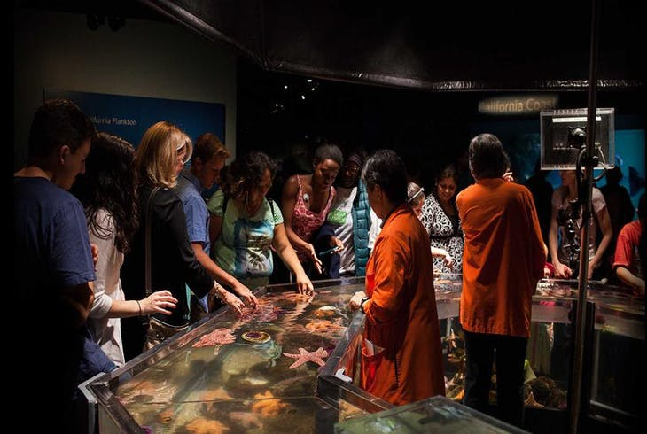 California Academy Of Sciences Daytime Admission