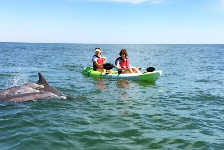 Chesapean Outdoors Dolphin Kayak
