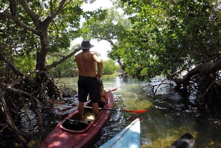 Danger Charters With Kayak Snorkel