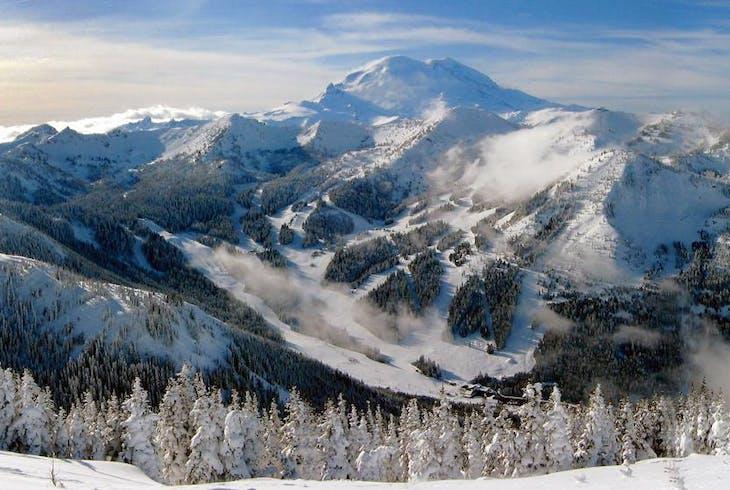 Evergreen Escapes Mt Rainier