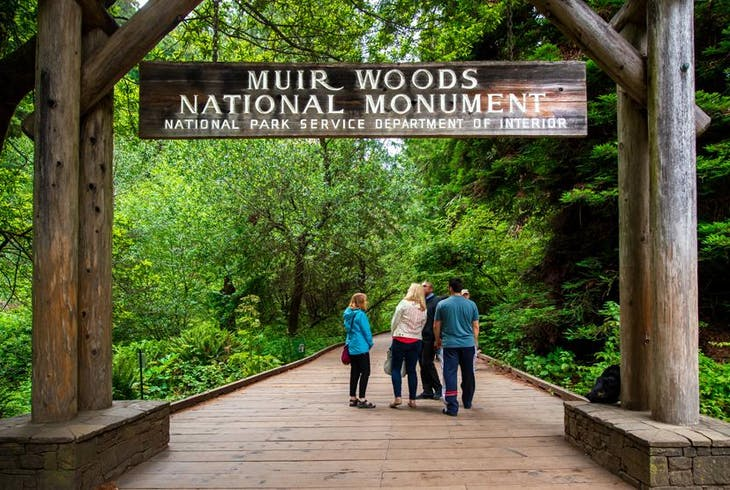 Extranomical Tours Bay In A Day With Muir Woods