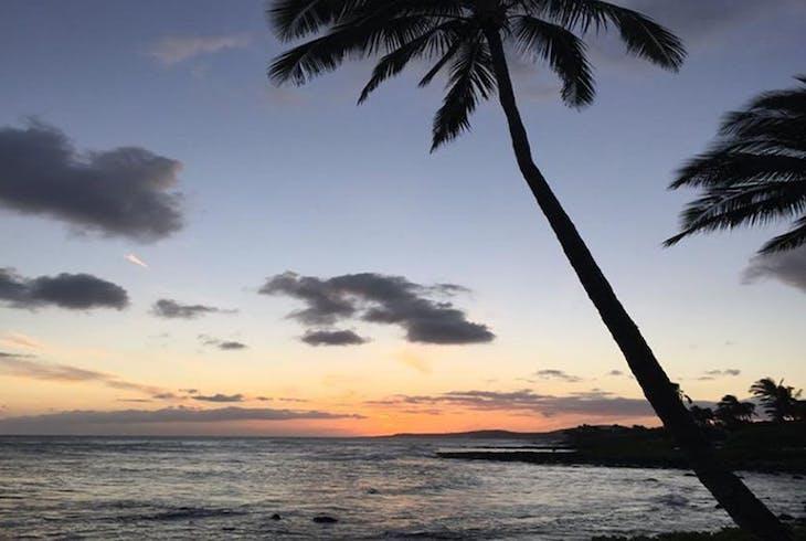 Hilo Ocean Adventures Certified Beach Night Dive