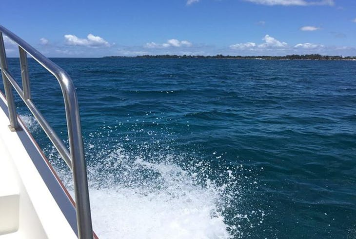 Hilo Ocean Adventures Hamakua Historical Hawaii Afternoon Cruise