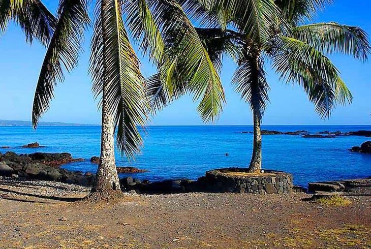 Hilo Ocean Adventures Surf Board Rental