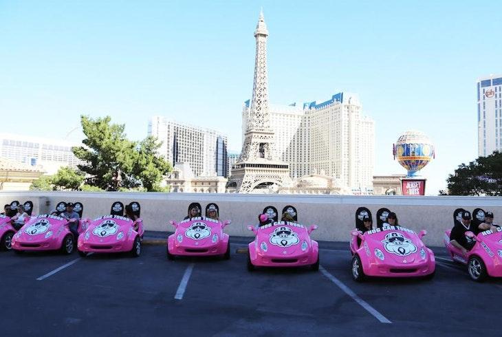 Hog Car Tours