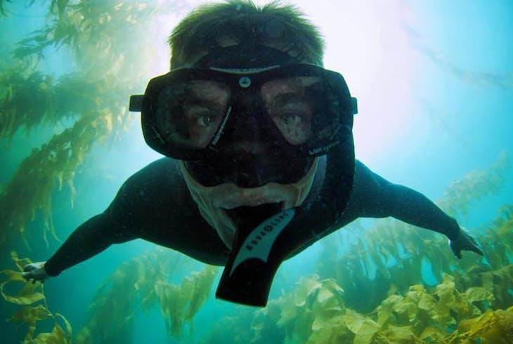 SD Expeditions La Jolla Cove Sea Lion Snorkeling