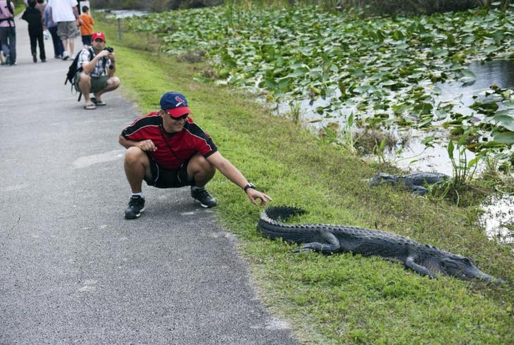 South Florida Trikke Everglades Airboat