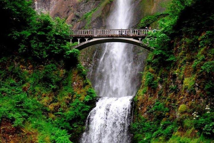 Wildwood Adventures Gorge Waterfalls And Mt Hood