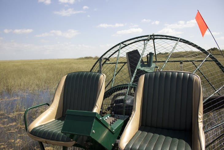 Florida Everglades Airboat Tour and Alligator Encounter