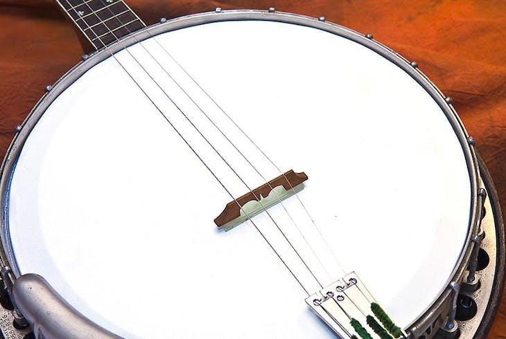 Beginner Banjo - Fingerpicking