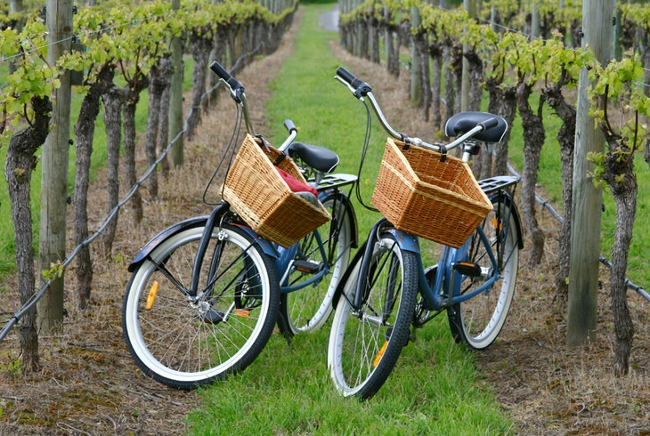 Beach Vineyard Bike Tour