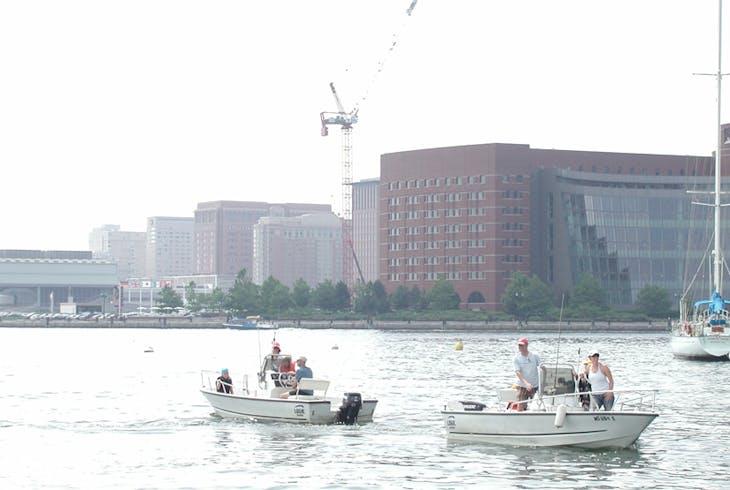 Boston Harbor Boat Rentals 17