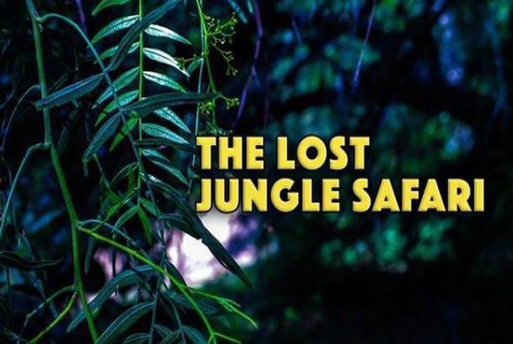 Brainy Actz Lost Jungle Safari