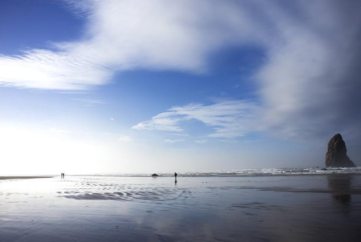 Northern Coast Tour Embrace Oregon Scenic Coastal