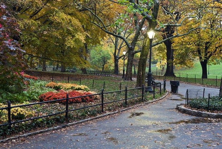 Central Park Walking Tour