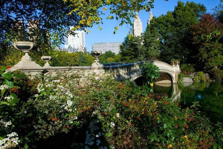 Citifari Central Park Photo Tour