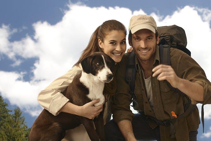 Dog Hiking