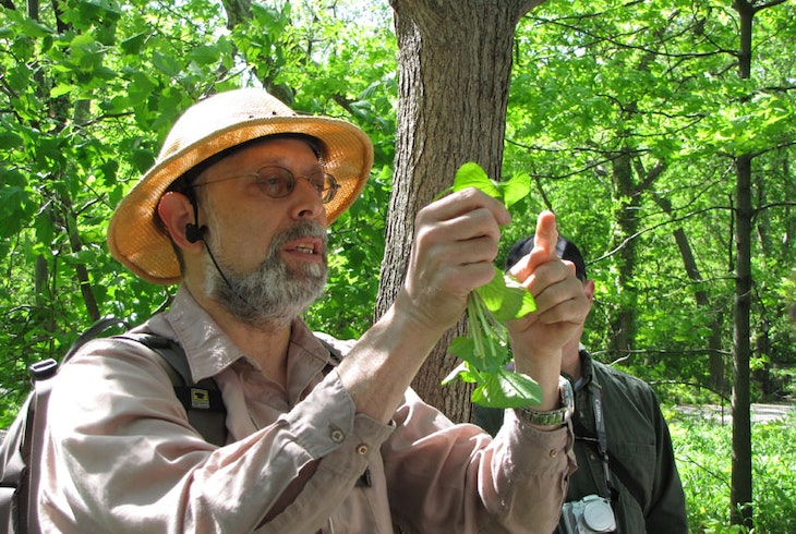 Foraging With Wldman Steve Brill