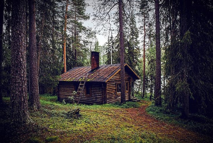 Forest Cabin Generic