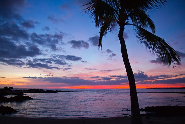 Hawaiian Beach Night