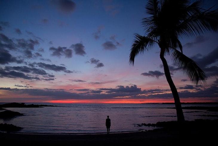 Hawaiian Beach Night