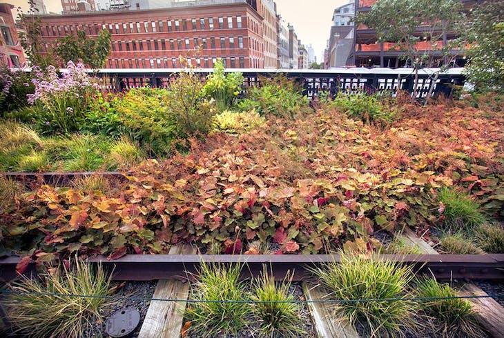 High Line Park Tour