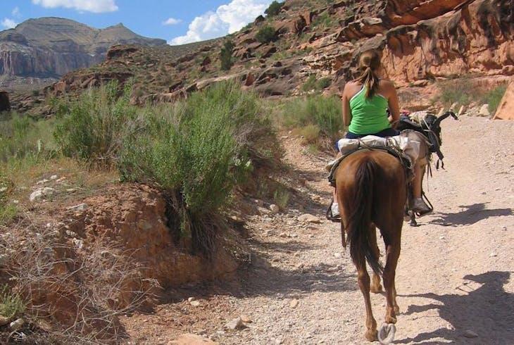 Horseback Riding Desert